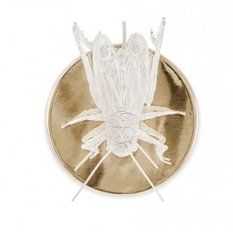 Boca Do Lobo Filigree Cricket